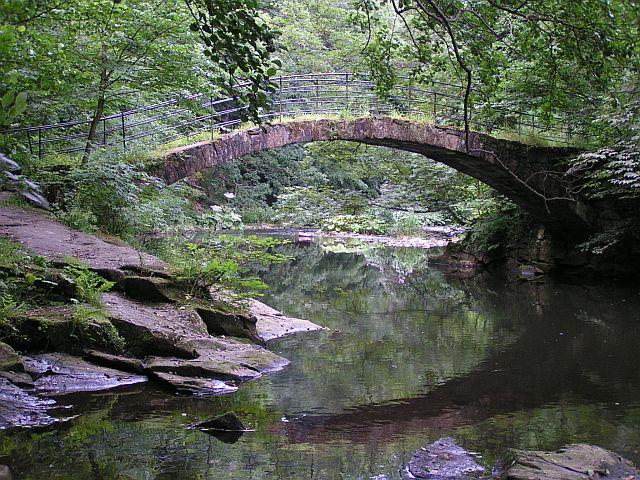 Bridge-Over-River